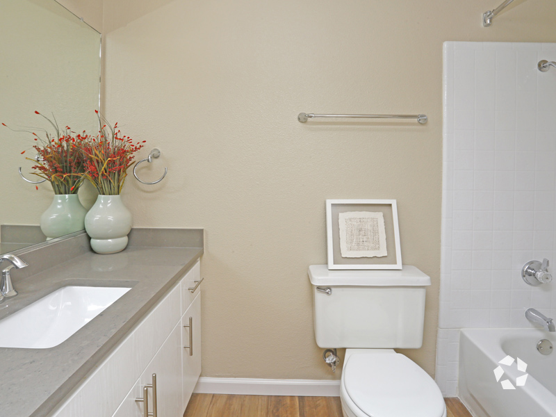 Wood Floors in Bathroom